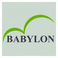 Babylon Group | LinkedIn