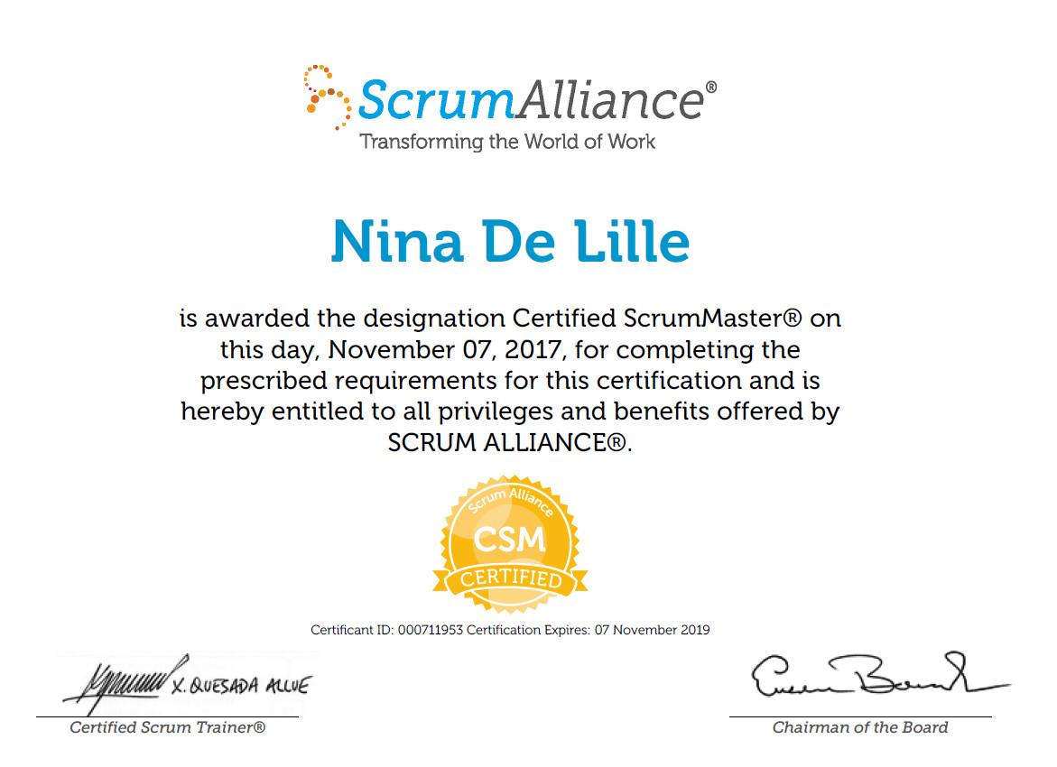 Scrummaster Nina De Lille Pulse Linkedin