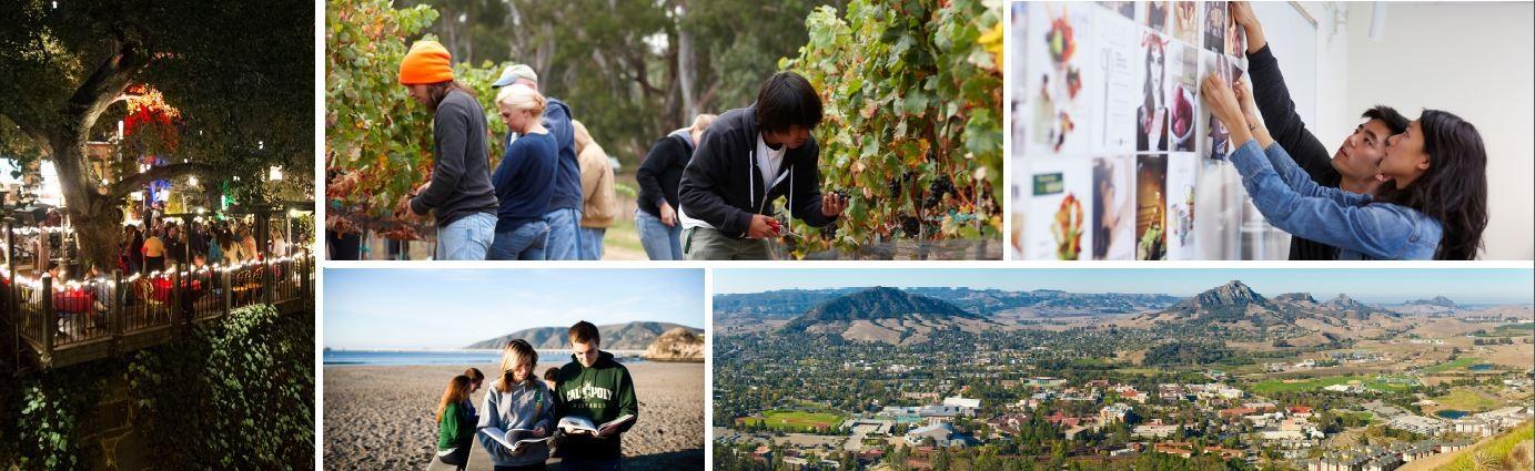 California Polytechnic State University | LinkedIn