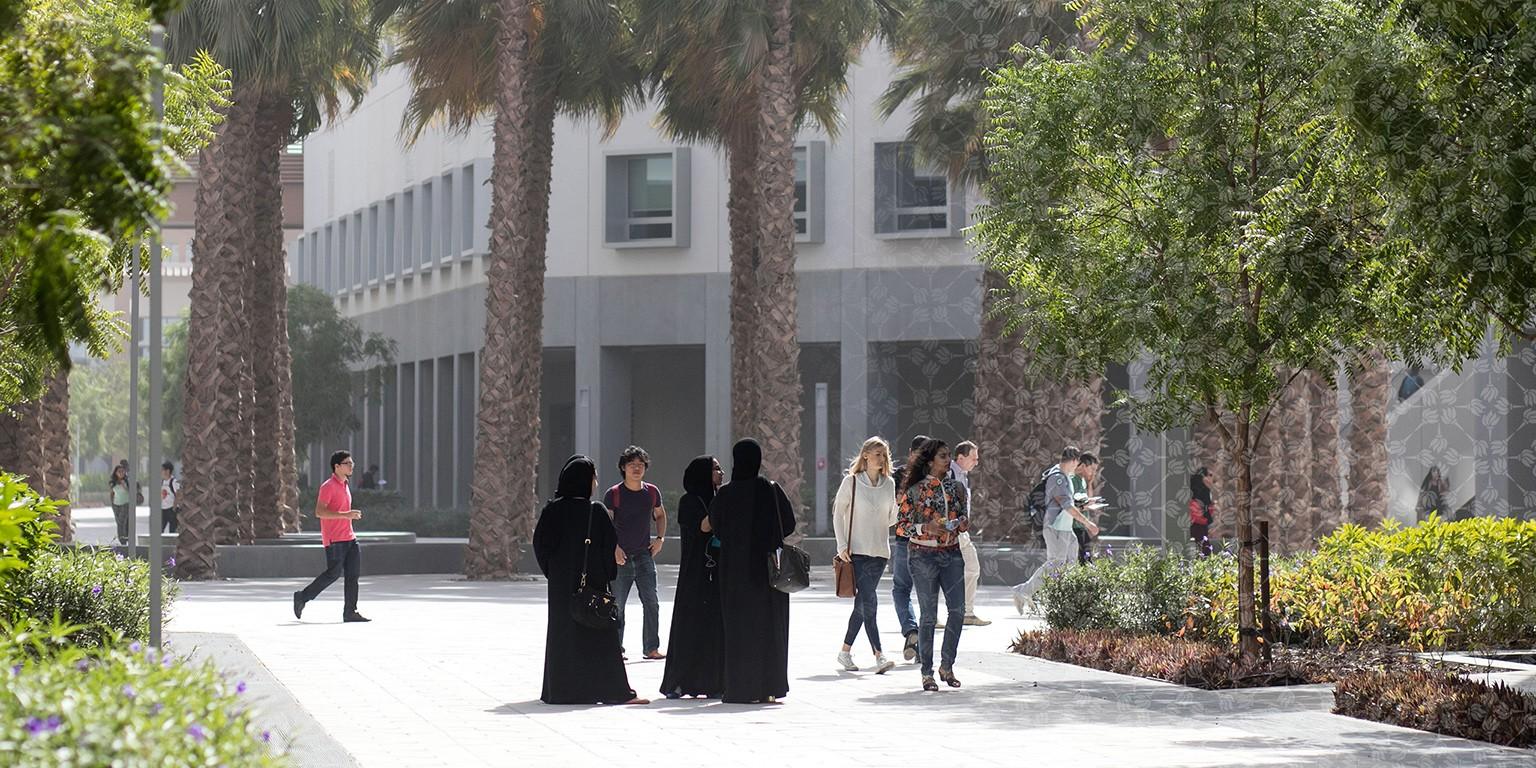 New York University Abu Dhabi | LinkedIn