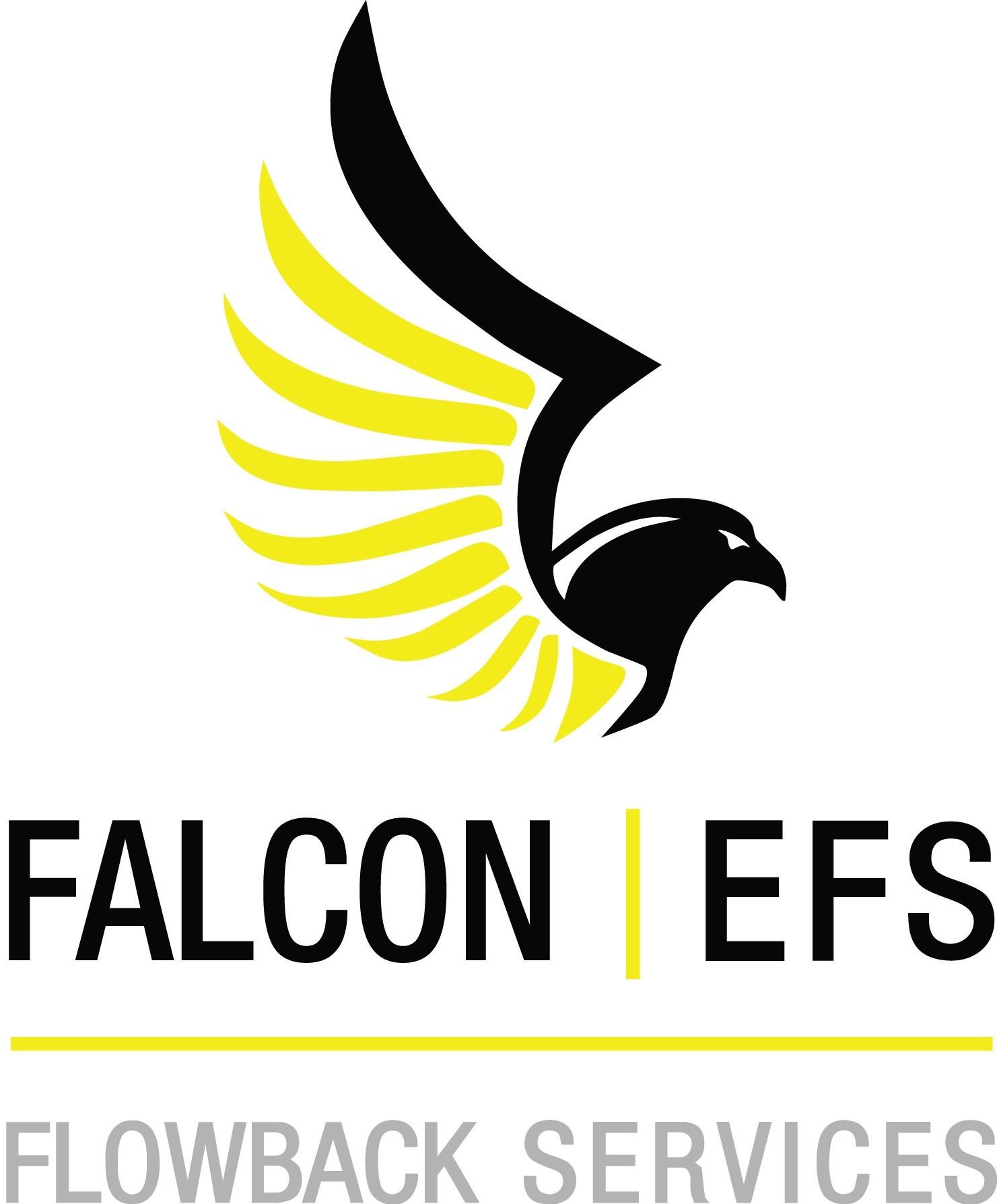 Falcon   EFS Flowback Services   LinkedIn