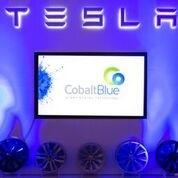 Cobalt Blue Holdings   LinkedIn