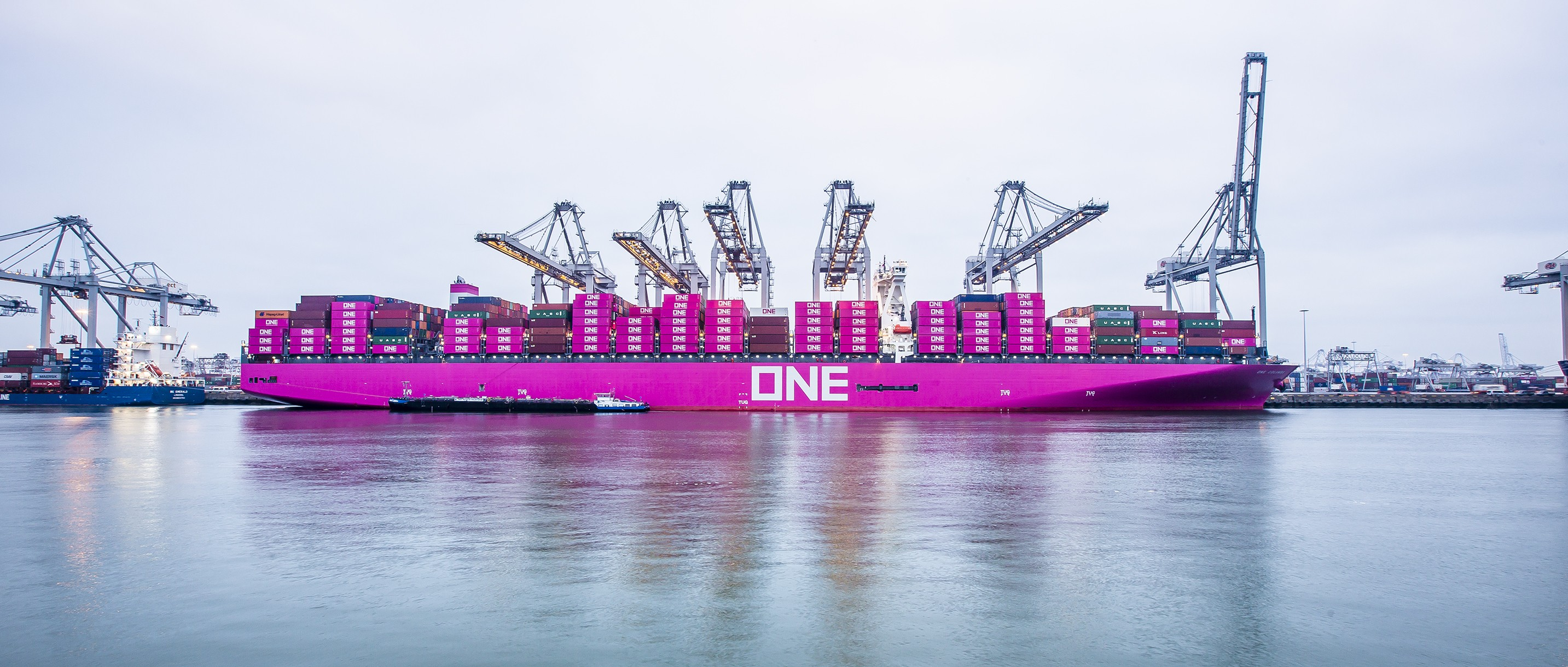 Ocean Network Express | LinkedIn
