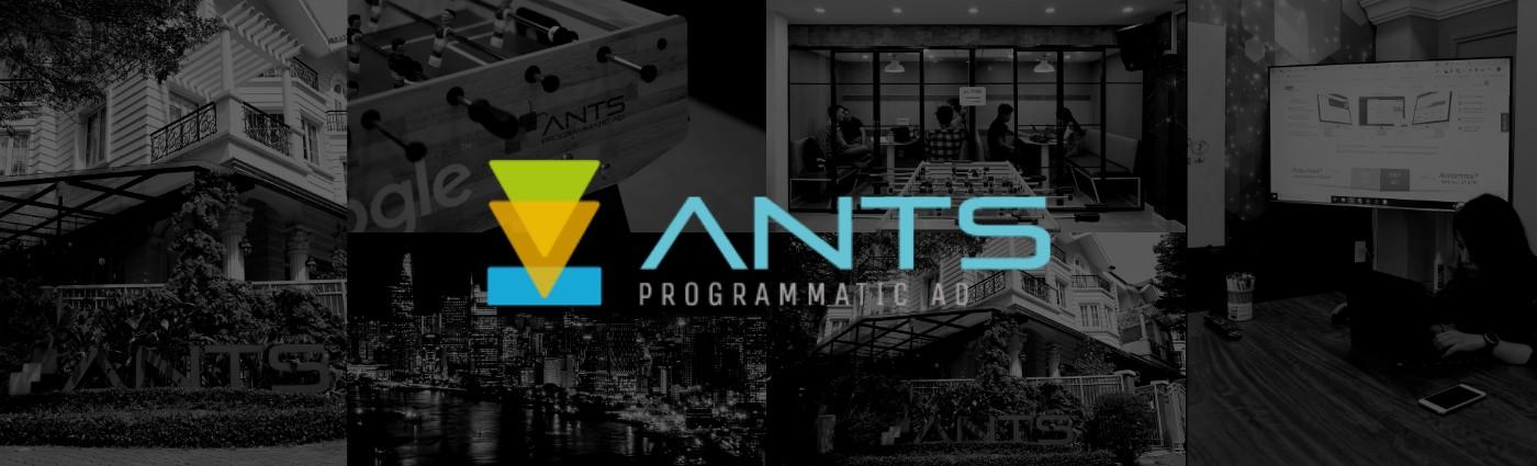 ANTS Programmatic | LinkedIn