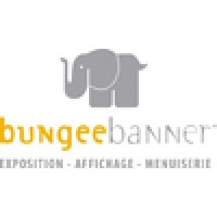 bungee banner canada linkedin