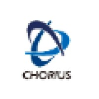 Chorius Executive Search Chief Operating Officer interview ...