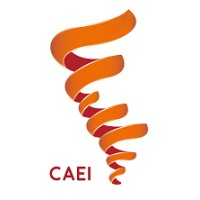 Conference of the Americas on International Education, CAIE CAEI