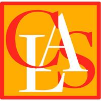 Resultado de imagem para center for latin american studies