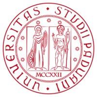 Risultati immagini per L'Università degli Studi di Padova