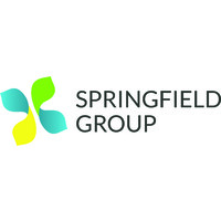 Image result for Springfield Group,