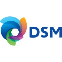 DSM: Jobs   LinkedIn