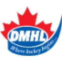 metro toronto hockey league