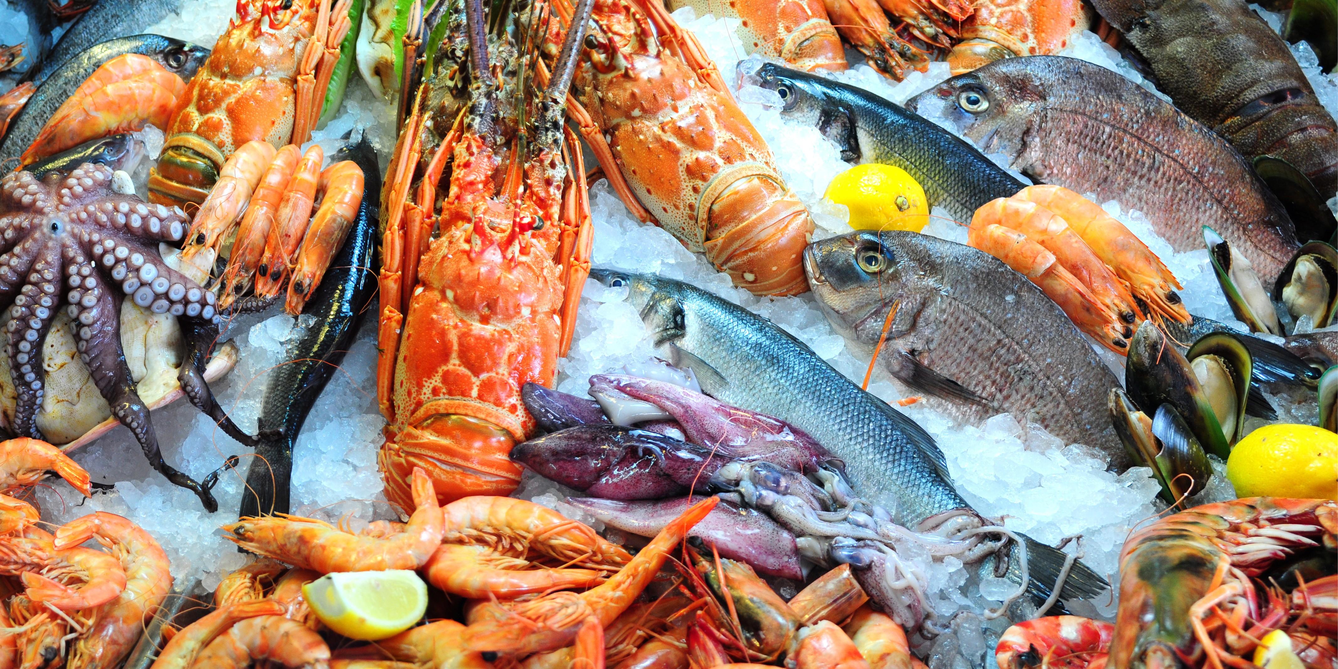 American Fish & Seafood Inc  | LinkedIn