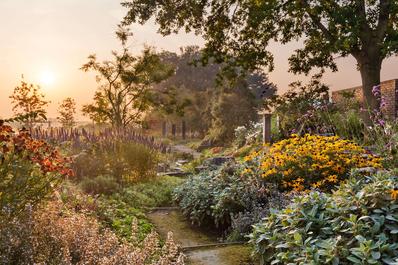 Van mierlo tuinen exclusieve tuinontwerpen linkedin