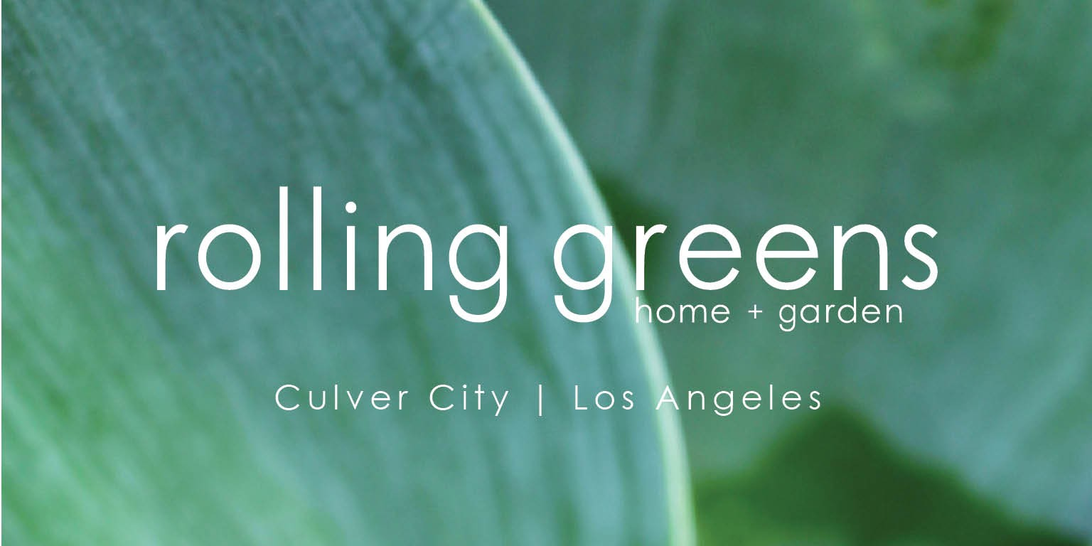 Rolling Greens Nursery   LinkedIn