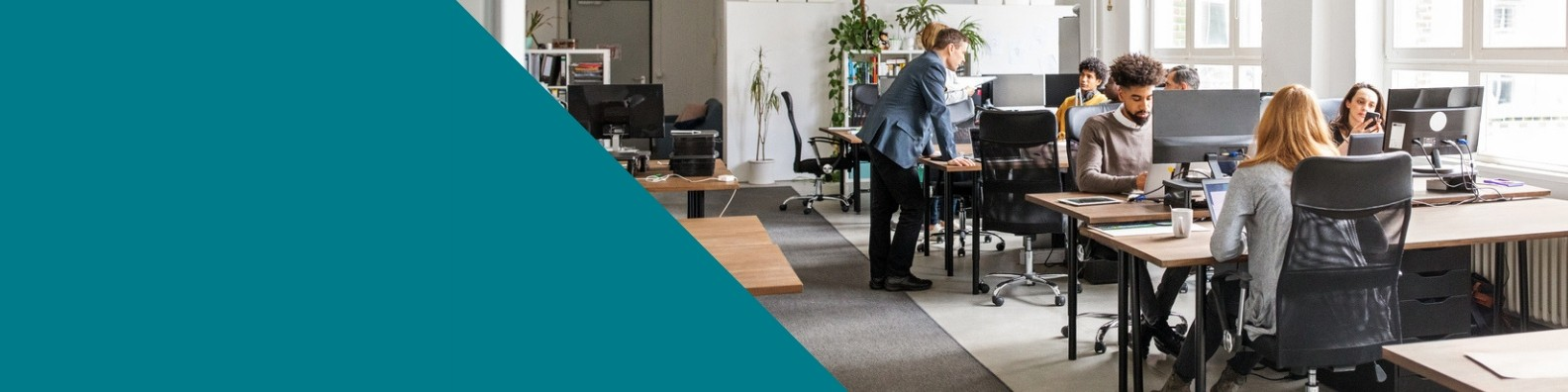 Inland Revenue NZ | LinkedIn