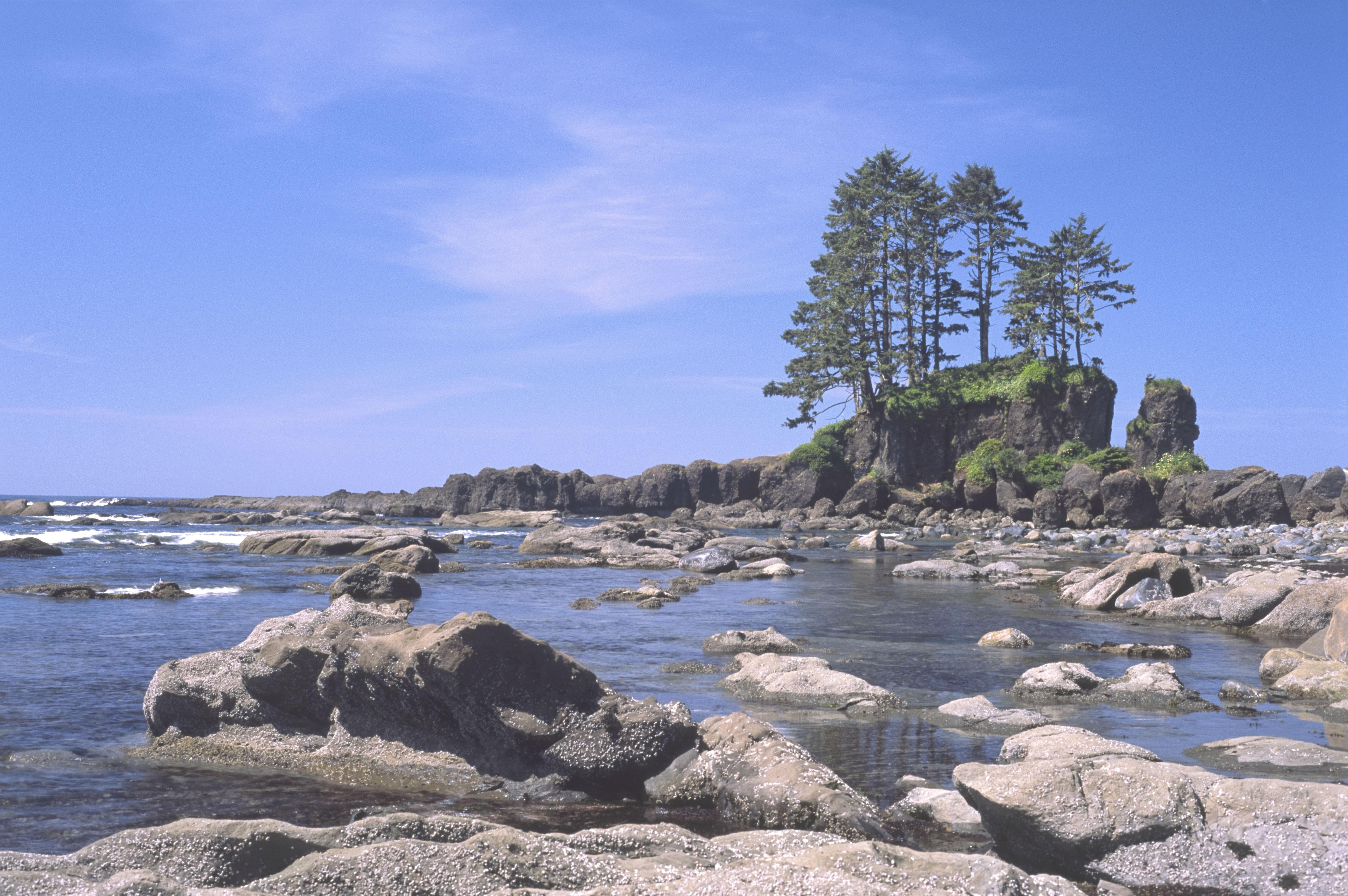 Left Coast Naturals | LinkedIn