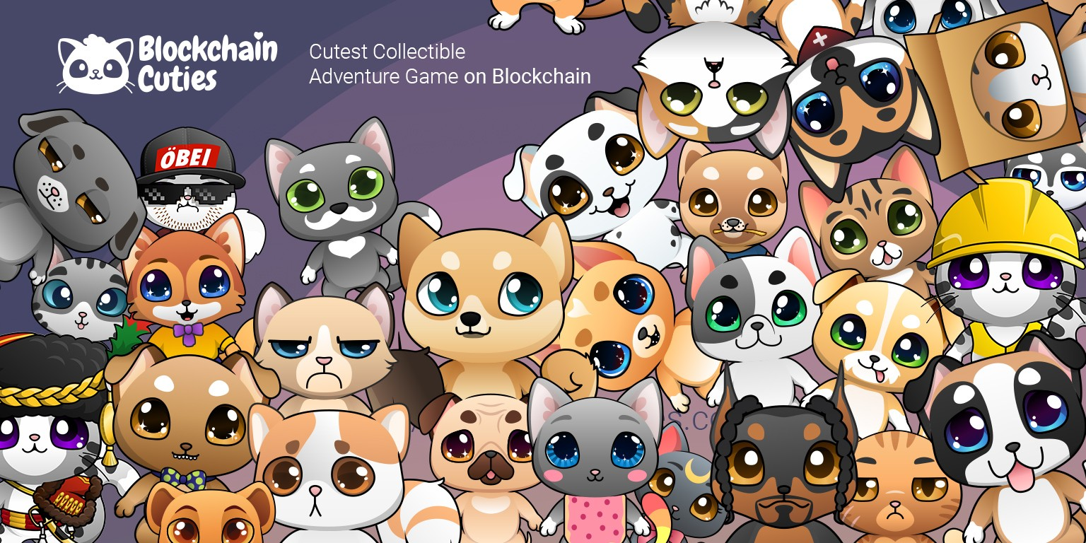 Blockchain Cuties | LinkedIn