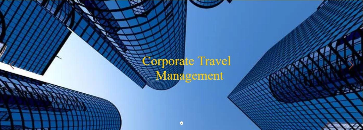 Pinnacle Travel Services, LLC   LinkedIn