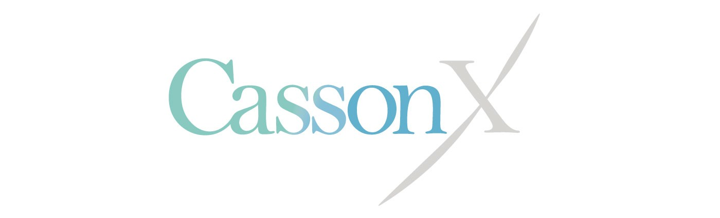 Image result for cassonx images