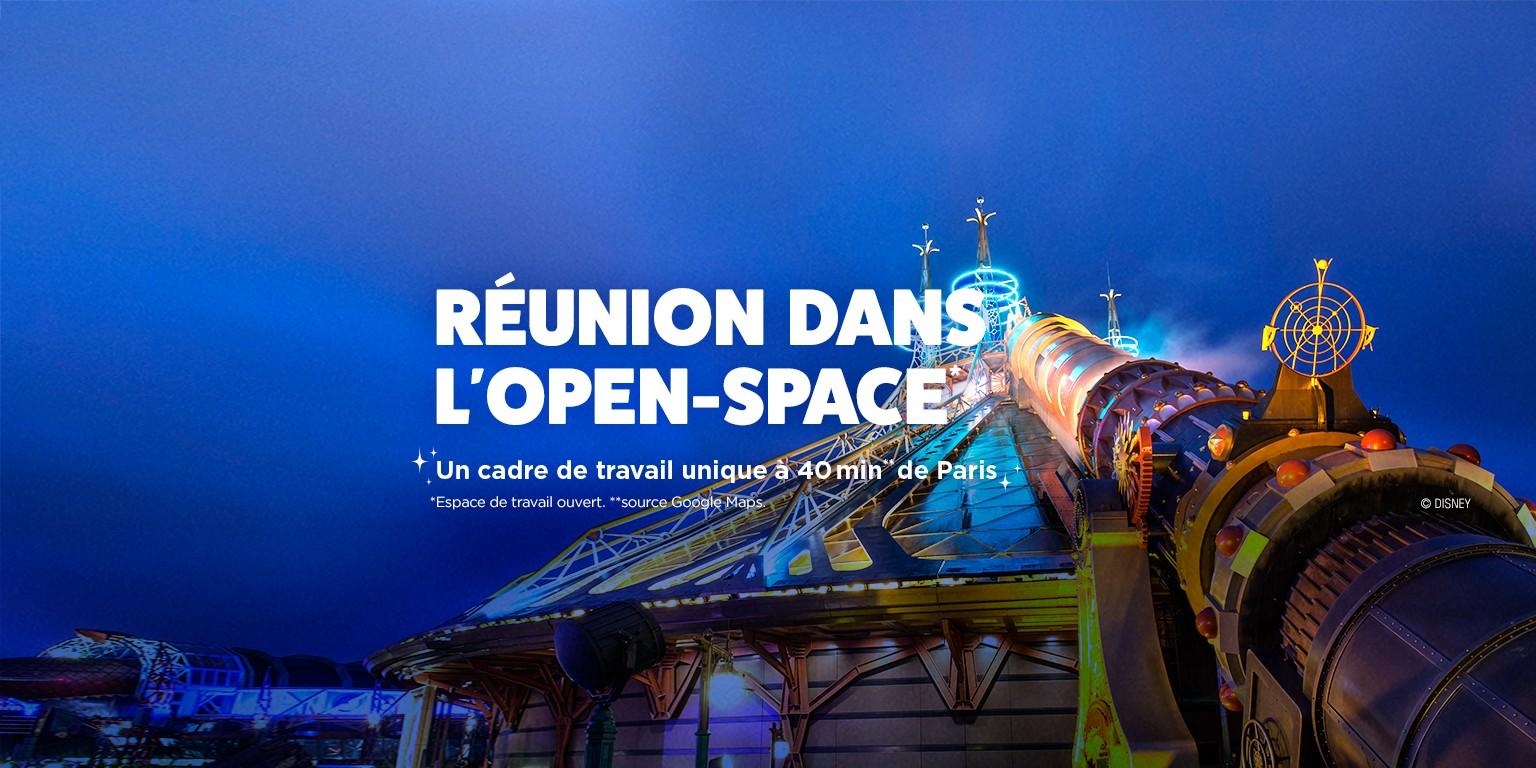 Disneyland Paris Linkedin