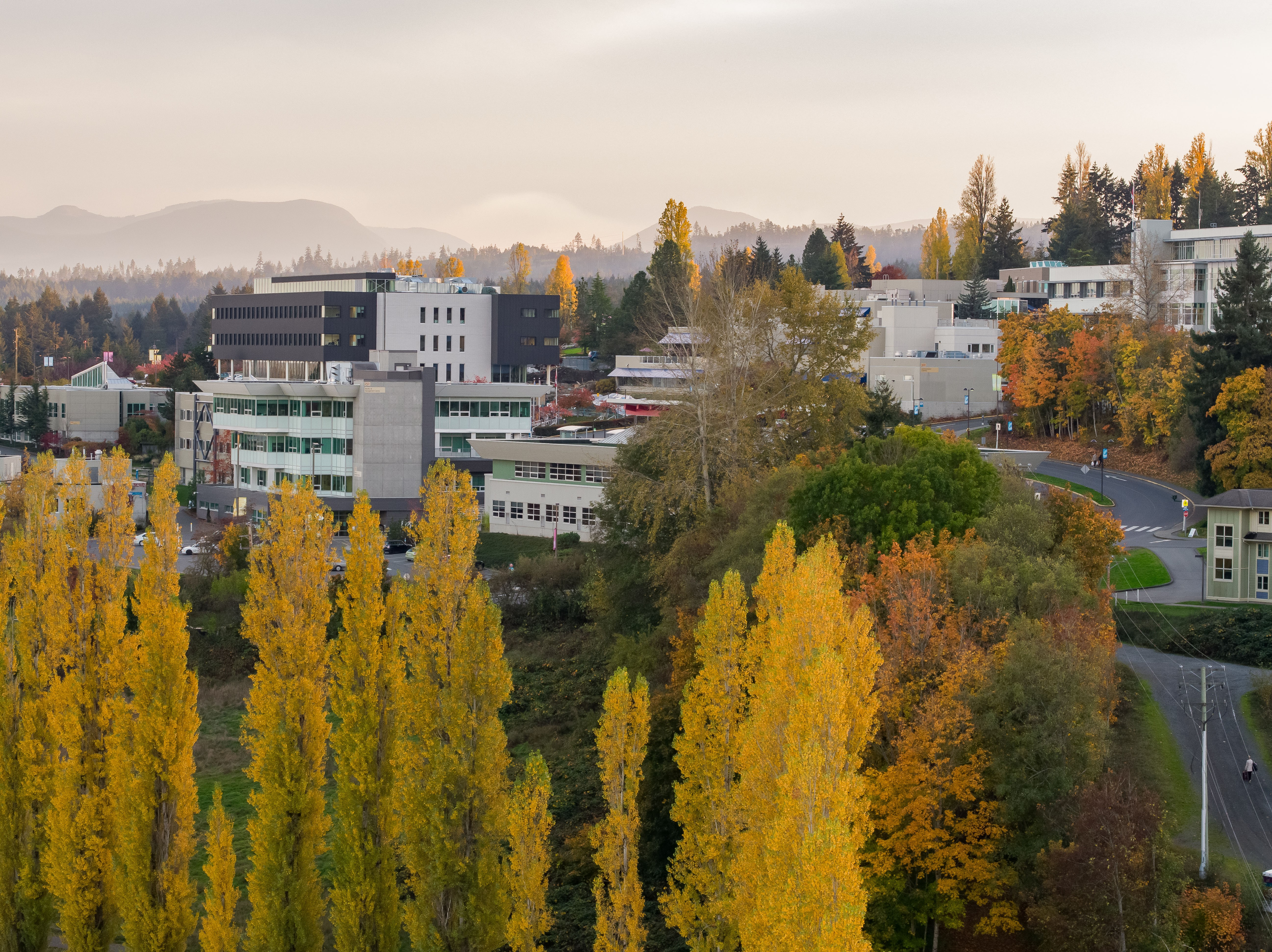 Vancouver Island University | LinkedIn