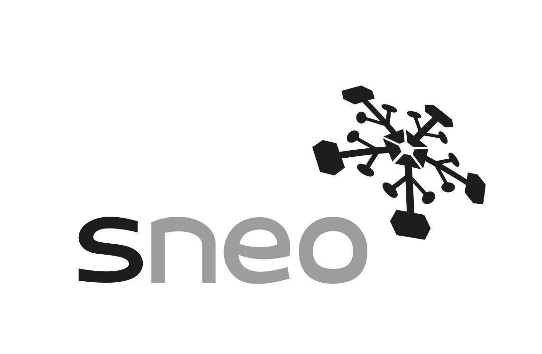 sneo GmbH | LinkedIn