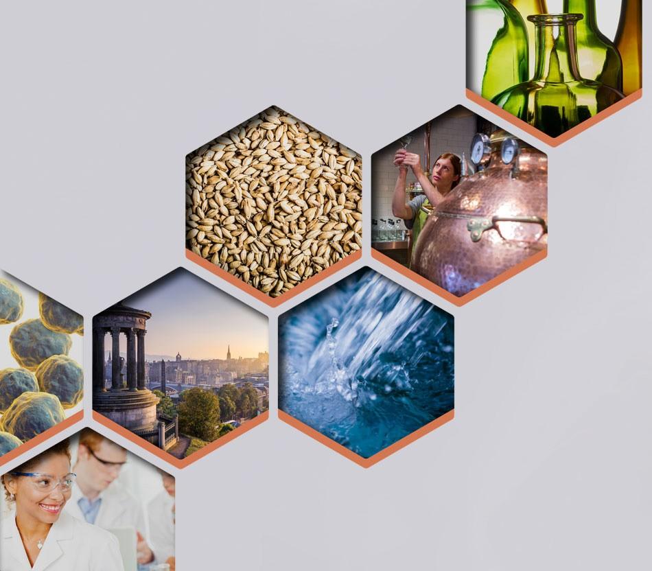 Worldwide Distilled Spirits Conference - WDSC 2020   LinkedIn