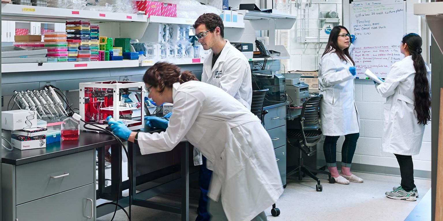Drexel University School of Biomedical Engineering, Science
