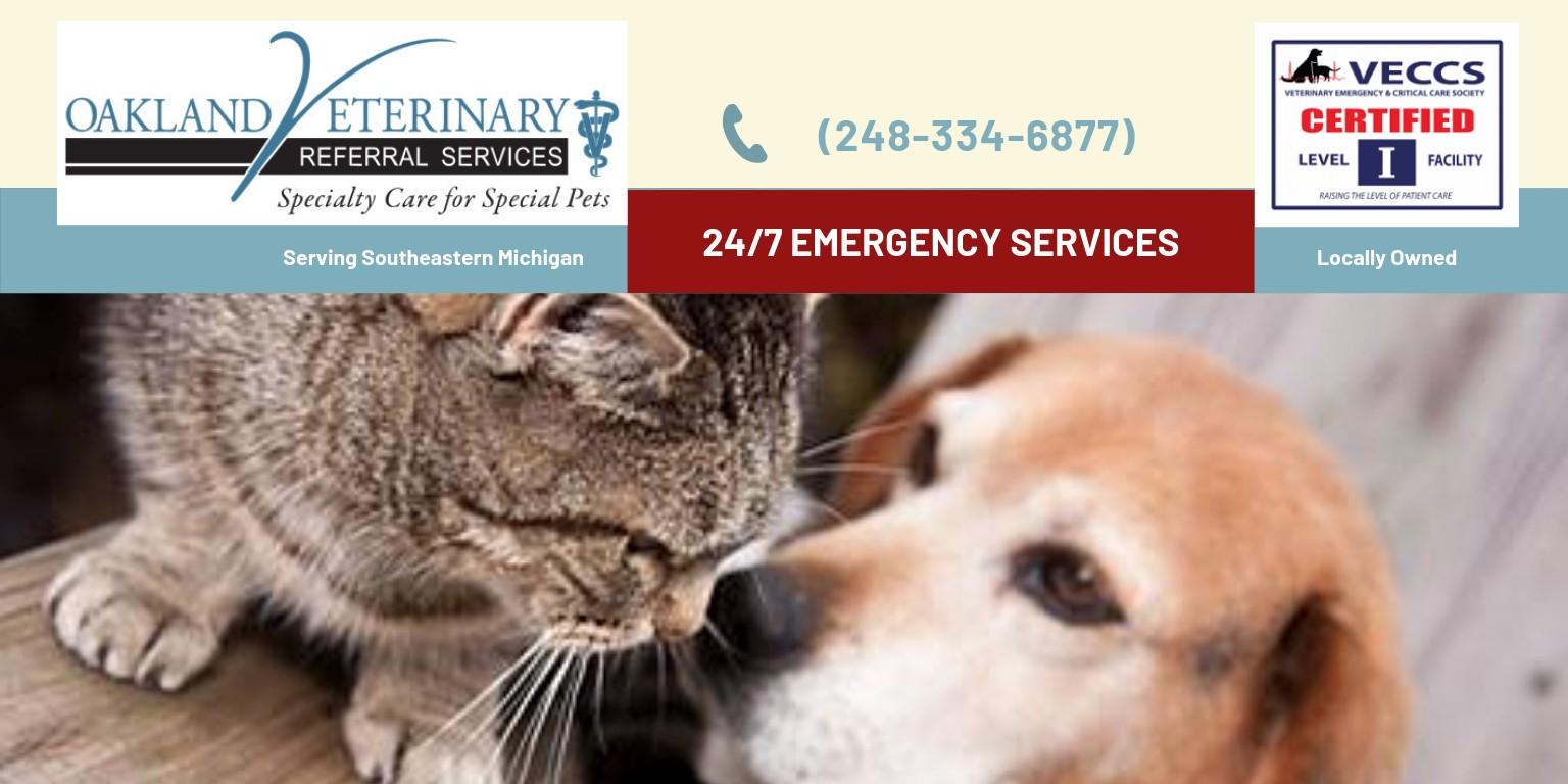 Oakland Veterinary Referral Services | LinkedIn