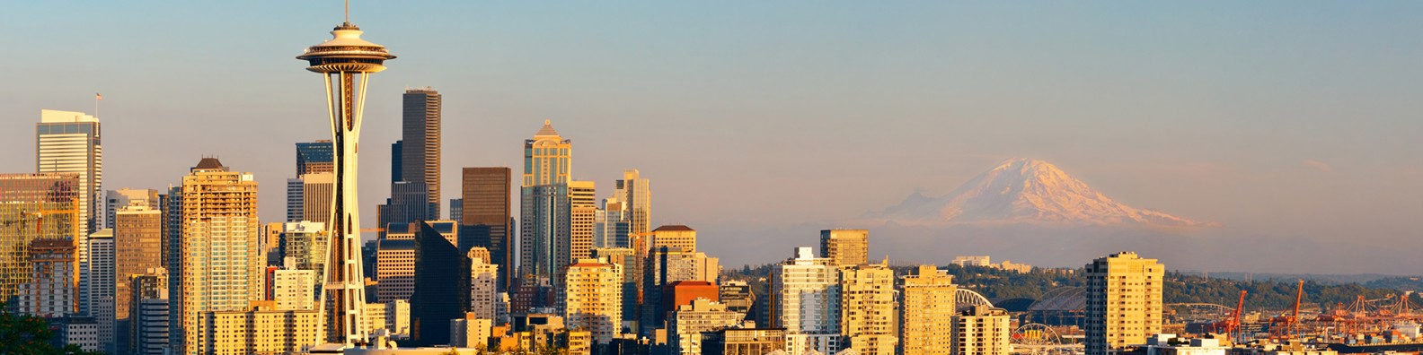 Polymershapes Seattle | LinkedIn