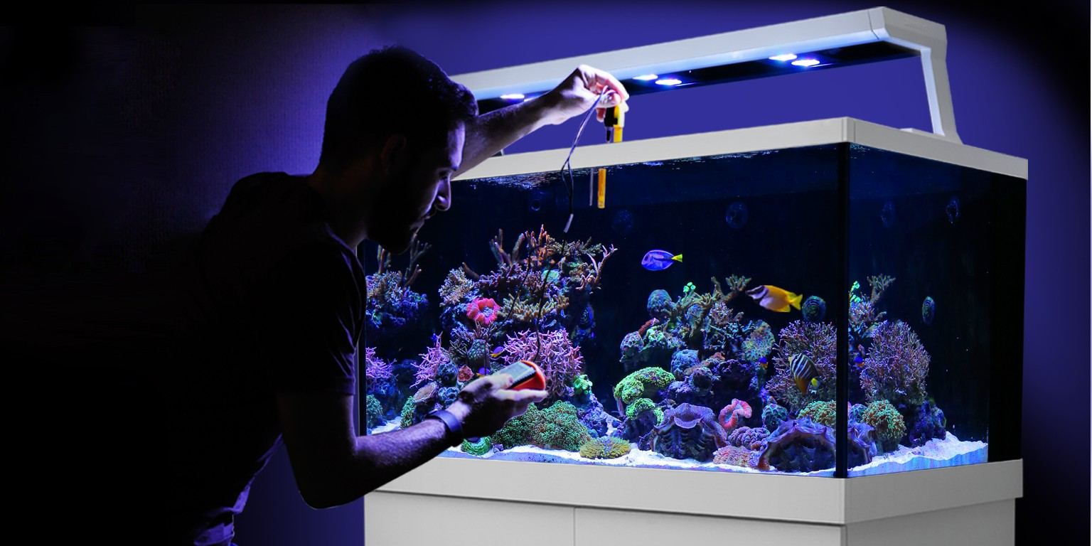 Red Sea Fish Pharm Ltd  | LinkedIn