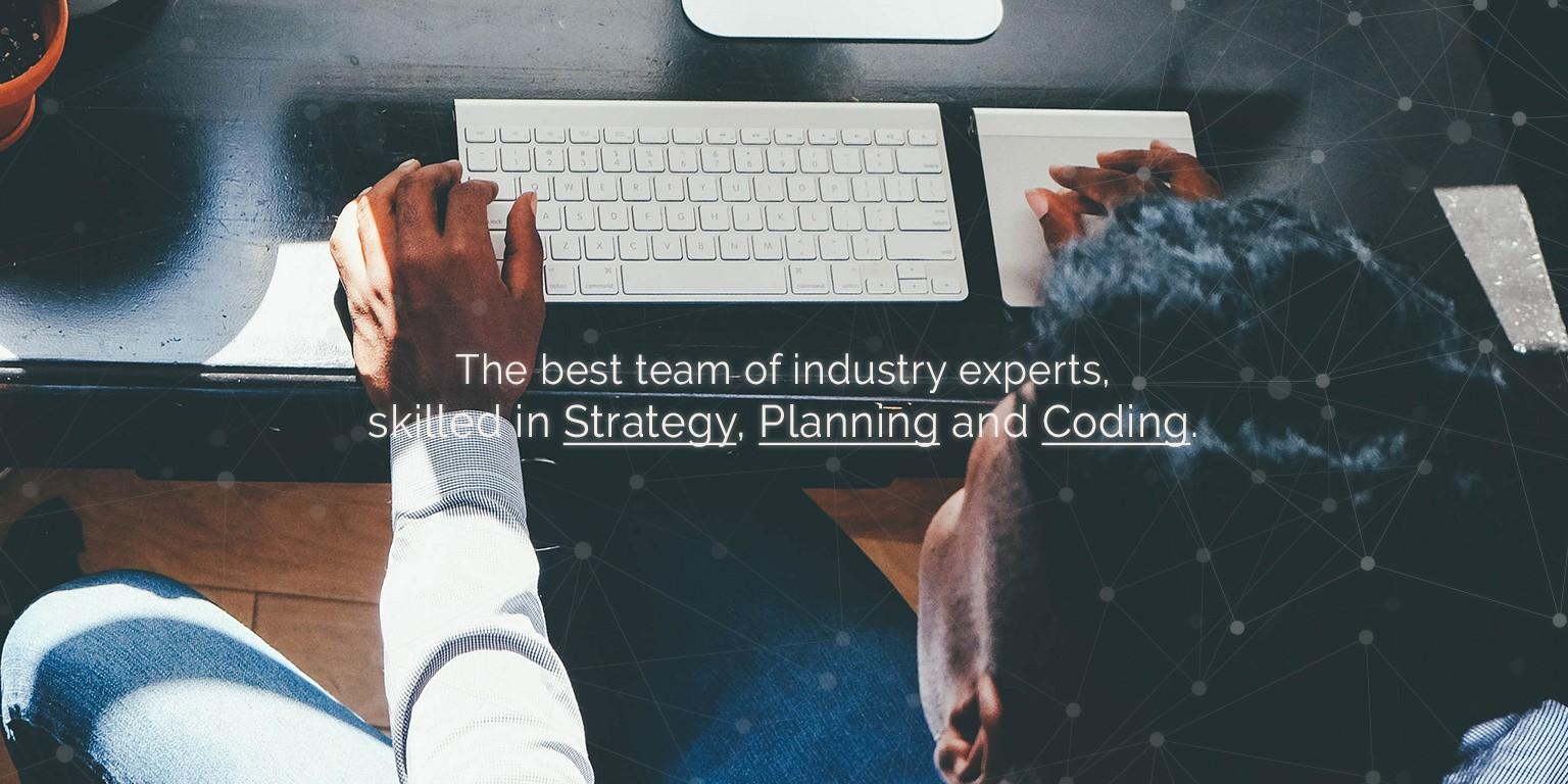 Media Shark Digital Marketing Agency | LinkedIn